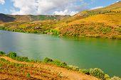 Valley Of  Douro