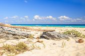 image of playa del carmen  - Carribean sea scenery in Playacar  - JPG