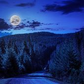 Going To Nature At Night