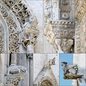 Collage protome cathedral Bari (Apulia) ITALY