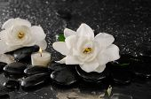 Two gardenia flower and candle on pebbles �¢�?�?wet background