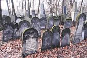 picture of polonia  - Old graves at historic Jewish cemetery Okopowa Street in Warsaw Poland - JPG