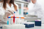 stock photo of scientist  - Scientist at work in a laboratory - JPG
