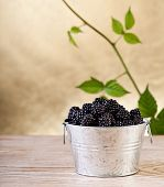 Blackberries With Leaves On Golden Background