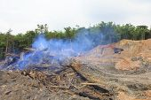 KUCHING, MALAYSIA - MAY 03 2014: Deforestation. Photo of tropical rainforest in Borneo being destroyed to make way for oil palm plantation.