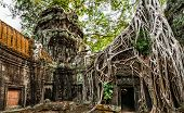 image of tropical rainforest  - Ancient Khmer architecture - JPG