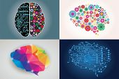 stock photo of left brain  - Collections of four different human brains - JPG