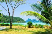 Jungle Lagoon Idyllic Island