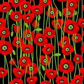 Poppy seamless pattern. Vector background