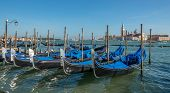 Gondolas Waiting For Tourists - Venice