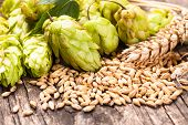 stock photo of bitters  - Barley and hops on a wooden background - JPG