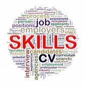 Word Tags Circular Wordcloud Of Skills