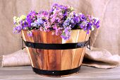 Big wooden basket with fresh flowers on sacking background