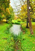 Landscape. Autumn Garden.