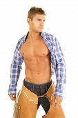 Cowboy Blue Plaid Shirt Blowing Look Side