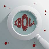 Digitally generated Ebola under the magnifying glass vector