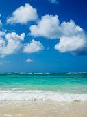 sea beach.