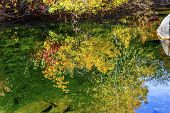 Yellow Red Leaves Fall Colors Water Reflection Wenatchee River Valley Near Leavenworth Washington