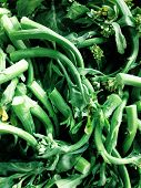 Chinese vegetable,Choy sum background