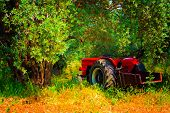pic of tractor  - Digital painting of a red tractor in an olive grove - JPG