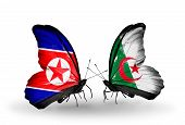 stock photo of algeria  - Two butterflies with flags on wings as symbol of relations North Korea and Algeria - JPG