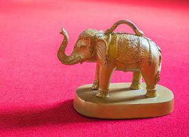 stock photo of oracle  - Elephant oracle - JPG