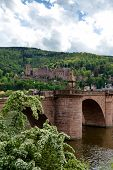 picture of quaint  - View of Heidelberg Castle in Lush Green Hillside Overlooking Quaint Town of Heidelberg - JPG