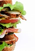 picture of whole-wheat  - Frame of Tasty Turkey Meat Sandwich with Cheese Tomato Bacon Marinated Gherkins and Lettuce on Whole Wheat Bread isolated on white background - JPG