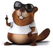 picture of beaver  - Beaver with a white tshirt - JPG