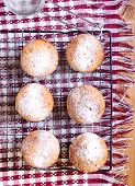 image of icing  - Whole meal muffins with raisin coated with icing on wire rack - JPG