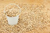 stock photo of bucket  - White bucket with pearl barley on the wooden floor as a background - JPG