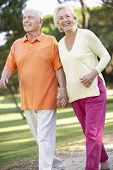 picture of stroll  - Senior Couple Walking In Park Together - JPG