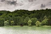 pic of cloud forest  - Natural lake with forest in the background and stormy clouds on the sky - JPG