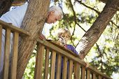 picture of grandfather  - Grandfather And Grandson Building Tree House Together - JPG