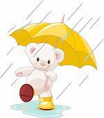 Cute Teddy Bear Under Umbrella