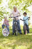 image of grandfather  - Hispanic Grandfather With Grandchildren In Park Riding Bikes - JPG