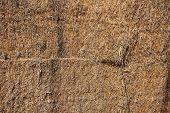 picture of threshing  - Straw  - JPG