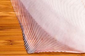 stock photo of flounder  - fresh raw flounder fin ready for cooking - JPG