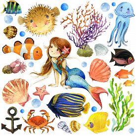 stock photo of shell-fishes  - underwater world - JPG
