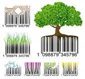 Barcode. Vector.