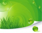 Green abstract. Vector template.