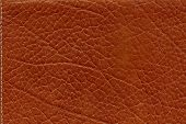 Natural Real Leather Background Detailed Macro With Stitching