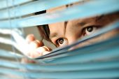 stock photo of voyeur  - Spying - JPG