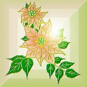 Graceful Golden Poinsettia