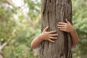 kid hans embracing a tree trunk