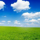 nuvens brancas bonitas e campo verde
