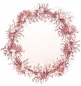 picture of art nouveau  - chrysanthemum grunge floral frame in pink colors  - JPG