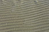 Figure In The Form Of Curved Lines In The Sand On The Beach, Make Waves/ Sand Texture/ Sand Pattern poster