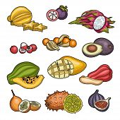 Fruits. Tropical Fruit. Carambola, Litchi, Granadilla, Winter Cherry, Figs, Java Apple, Mangosteen,  poster