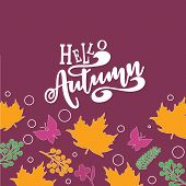 Hello Autumn Text Poster Of September Leaf Fall Or Autumnal Foliage Of Maple, For Shopping Sale Desi poster